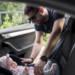 Seggiolino auto la sicurezza per i più piccoli